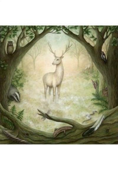 Animal Wisdom Card