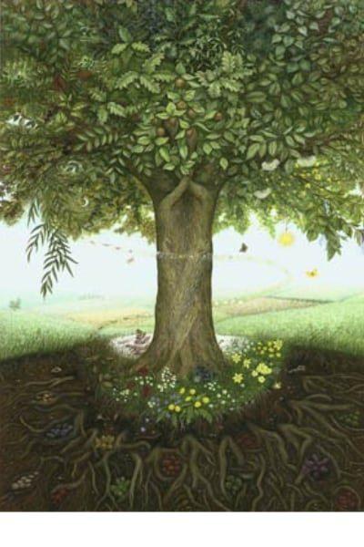 Tree Wisdom Card