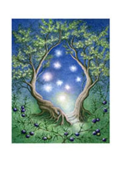Juniper Spirits Card